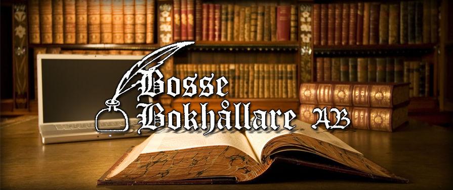 Bosse Bokhållare AB, Bokföring, Redovisning