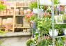 Trädgård och balkong